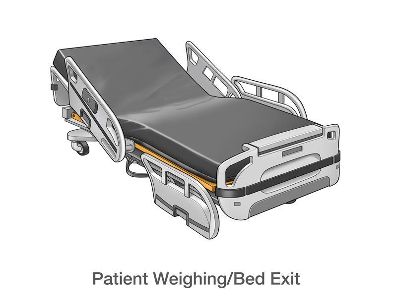 Patient Weighing/Bed Exit